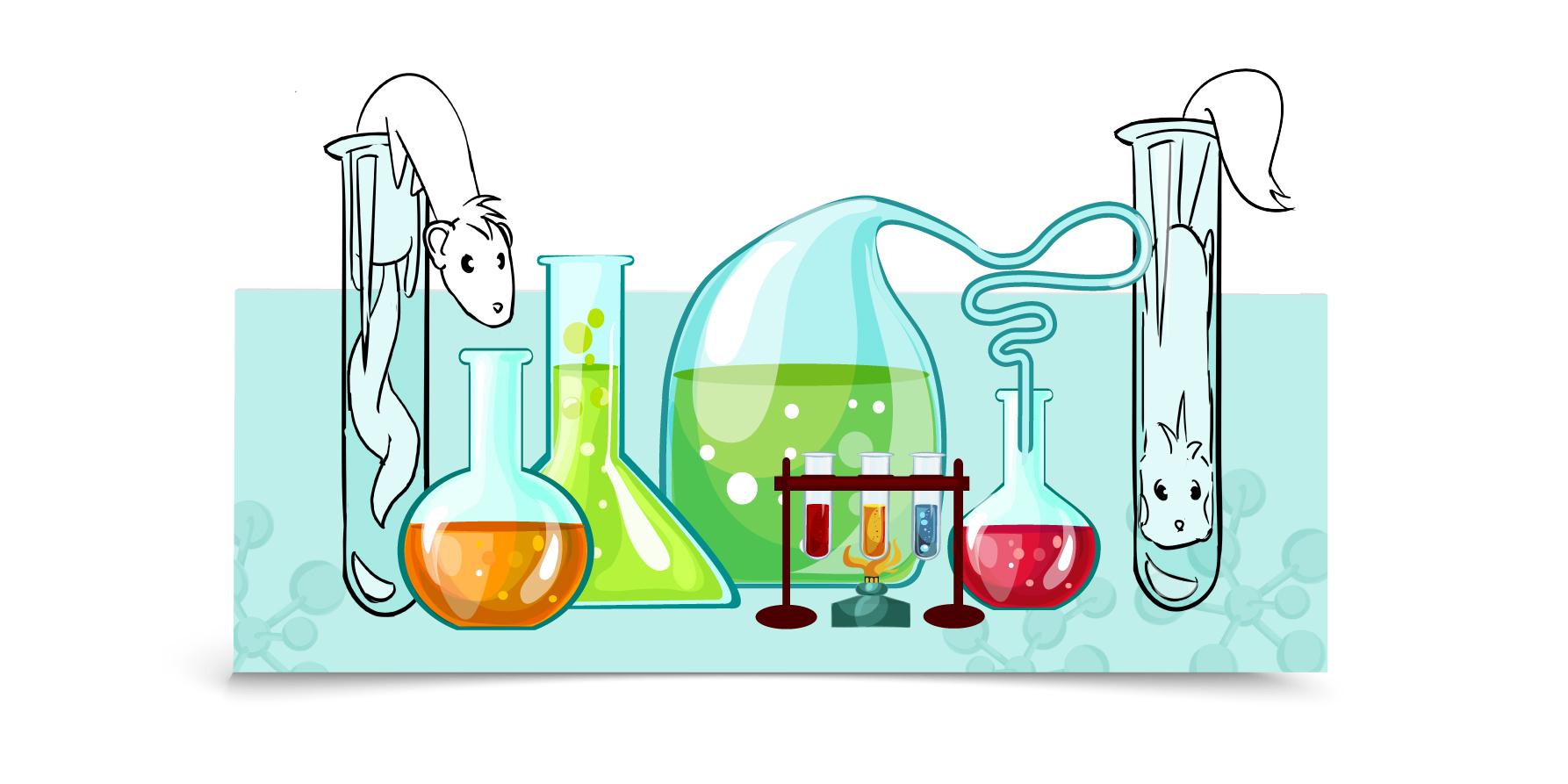 jane-et-bernie-illustrations-furet-company-furet-lab